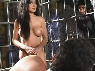 Asia Carrera-Planet der babes